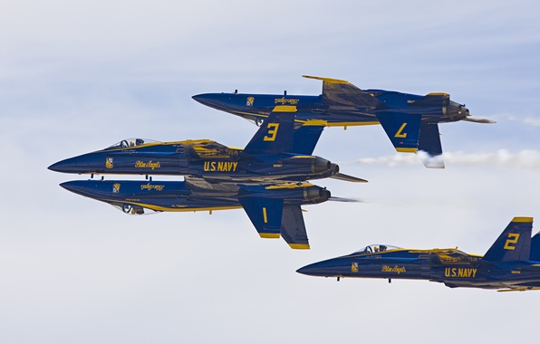 """Picture figure, aerobatic team, The plane, Blue Angels, F/A-18 """"Hornet"""", fighter-bombers"""