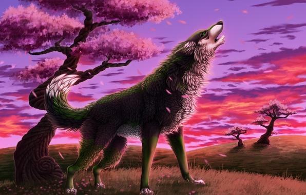 Picture grass, trees, wolf, spring, petals, Sakura, art, howling, transparentghost