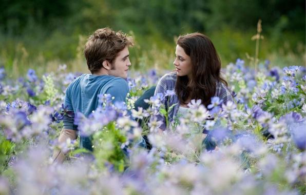 Picture field, flowers, Eclipse, Kristen Stewart, twilight, Robert Pattinson, two, twilight, Kristen Stewart, eclipse, flowers, Saga, …