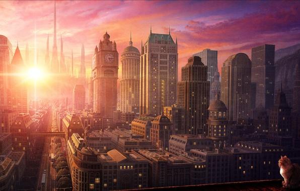 Picture city, sunset, cat
