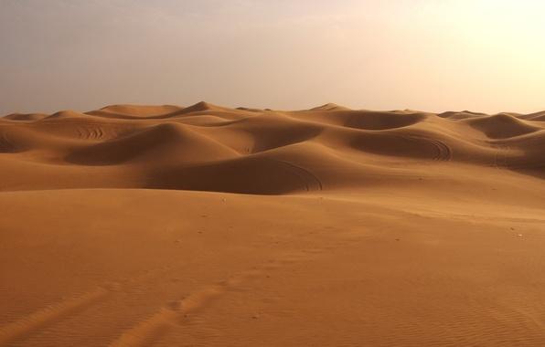Picture desert, Sand, dunes