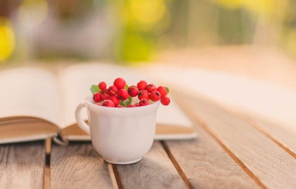 Picture autumn, berries, table, blur, Cup, red, book, Rowan