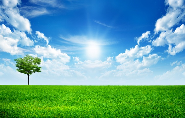 Picture the sky, grass, clouds, tree, green, grass, sky, trees, landscape, All Alone In This World, …