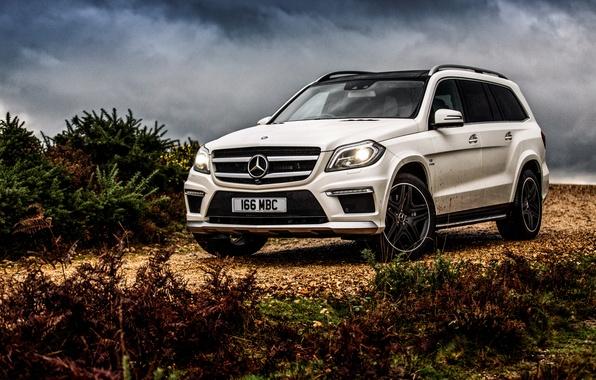 Picture Mercedes-Benz, Mercedes, AMG, AMG, UK-spec, 2013, GL 63, X166