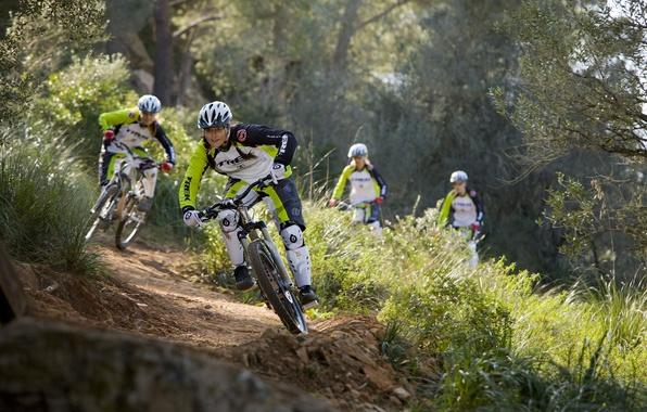 Picture dirt, bike, mountain, rocks, hill, freeride, downhill, mtb, crazy, mountainbike
