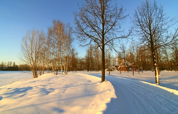 Picture winter, road, the sky, snow, trees, morning, house