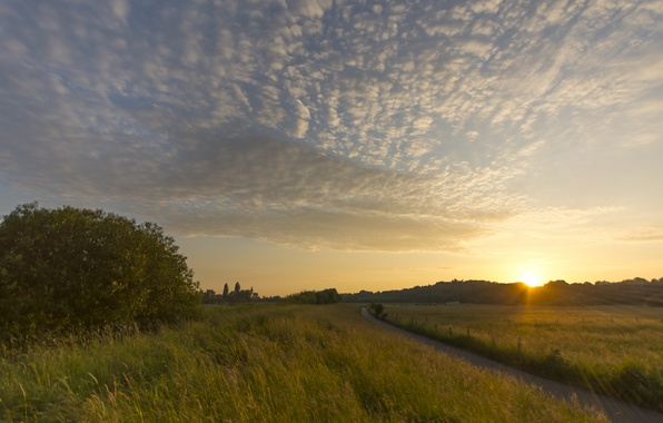 Picture field, the sky, the sun, clouds, rays, trees, sunset, glade, the evening, Germany, path