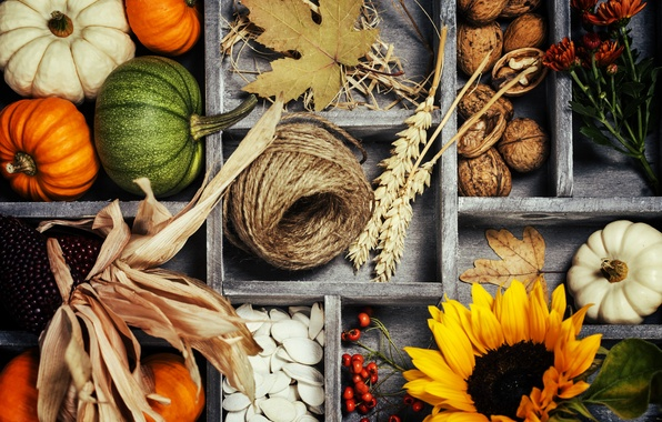 Picture autumn, leaves, basket, harvest, pumpkin, vegetables, autumn, still life, vegetables, harvest