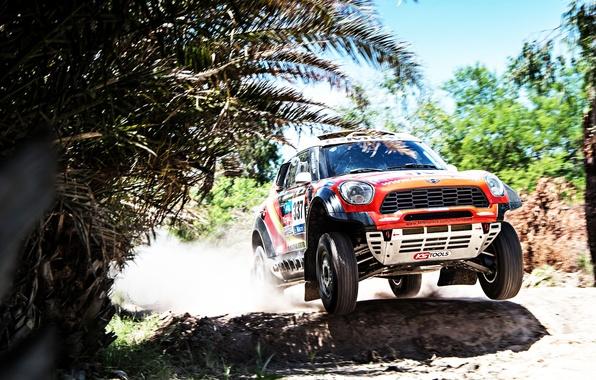 Picture Mini, Trees, Sport, Speed, Race, Lights, Mini Cooper, Dakar, SUV, Rally, Mini, The front, 2014, …