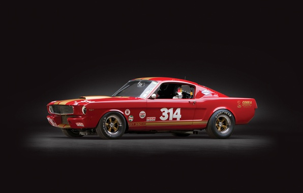 Picture shelby, ford mustang, race car, gt350h