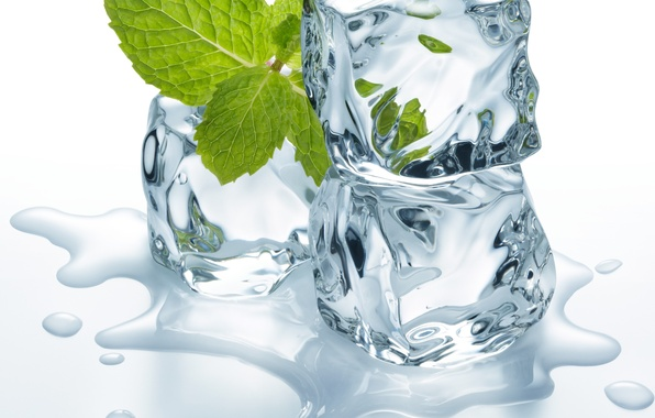 Photo Wallpaper Leaves Ice Cubes Water