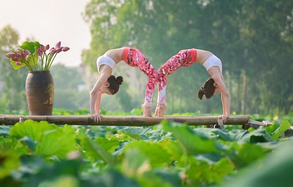 Photo wallpaper girls, pose, gymnastics, yoga, Asian girls