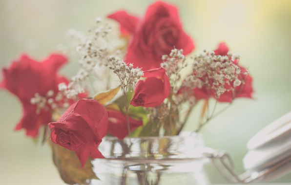 Picture beauty, roses, jar