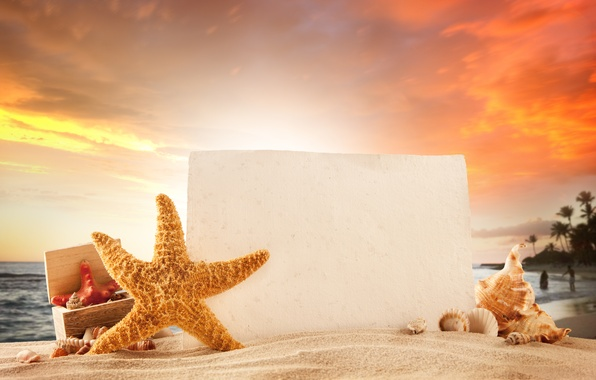 Picture sand, sea, beach, summer, the sun, stay, summer, beach, vacation, tropical, starfish, seashells