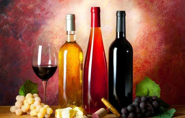 Picture wine, glass, cheese, bread, grapes, tube, bottle, still life, corkscrew