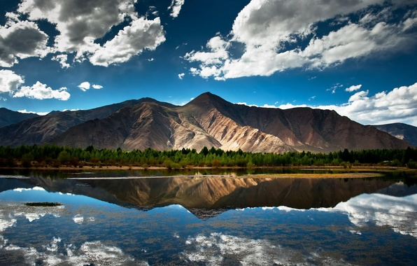 Picture forest, summer, the sky, clouds, landscape, mountains, nature, lake, reflection, shore