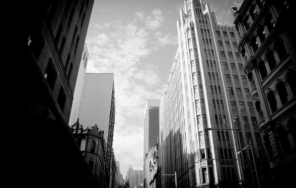 Picture the sky, white, building, skyscrapers, black