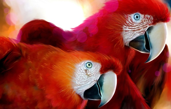 Picture Red, Figure, Ara, parrot