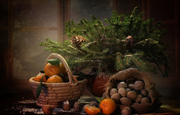 Picture winter, branches, basket, new year, spruce, window, tree, fruit, nuts, still life, bag, bumps, tangerines