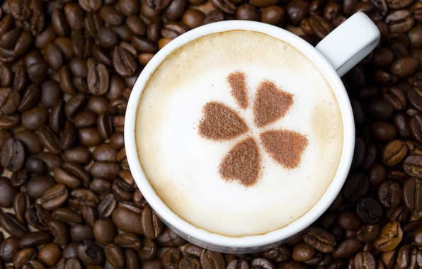Picture foam, pattern, coffee, grain, Cup, white, drink, leaves, cappuccino