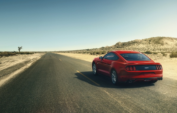 Picture red, Mustang, Ford, Mustang, red, muscle car, Ford, muscle car, rear