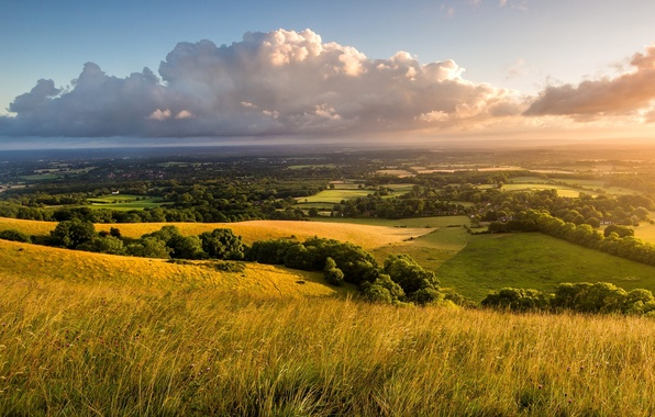 Picture the sky, grass, clouds, trees, landscape, nature, dawn, hills, field, England, morning, UK, the countryside