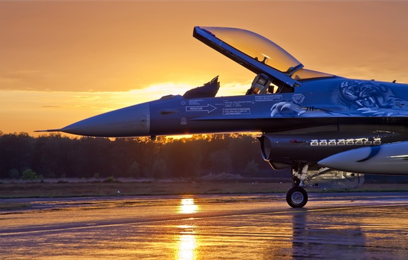 Picture Sunset, The sky, Clouds, The evening, The plane, Trees, Forest, Fighter, F-16, Fighting Falcon, The …