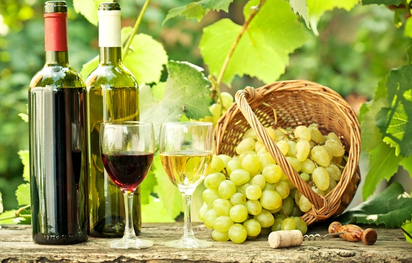 Picture leaves, branches, wine, red, white, basket, glasses, grapes, tube, bottle, corkscrew