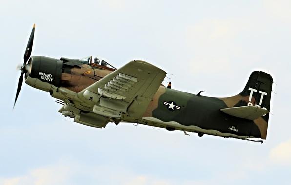 Picture flight, Grumman, deck, torpedo, Avenger