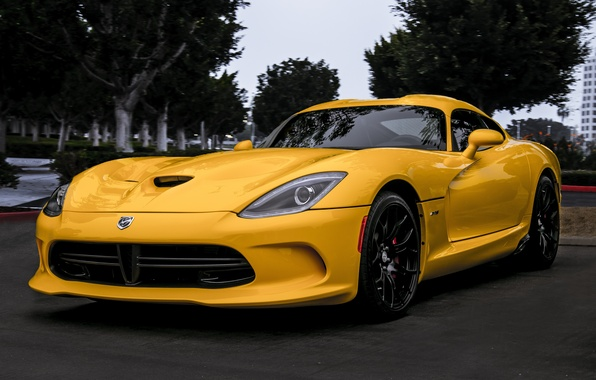 Picture trees, yellow, viper, Dodge, Viper, front view, yellow, dodge, SRT GTS