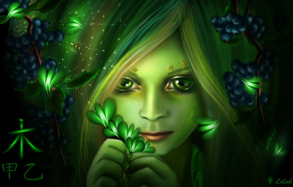 Picture eyes, look, girl, butterfly, face, berries, web, spider, art, character, lilok-lilok