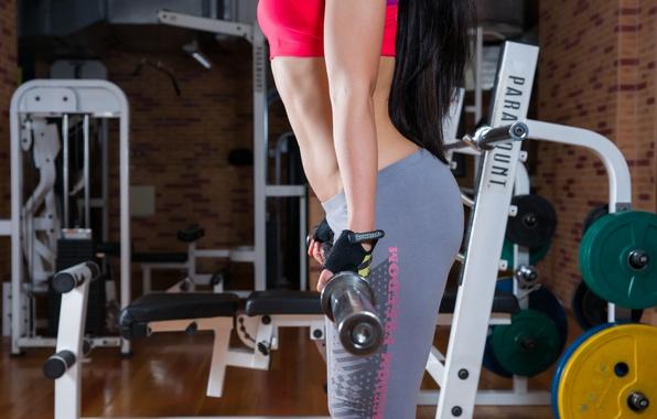 Photo wallpaper girl, hands, figure, sports, legs, Grif, the gym