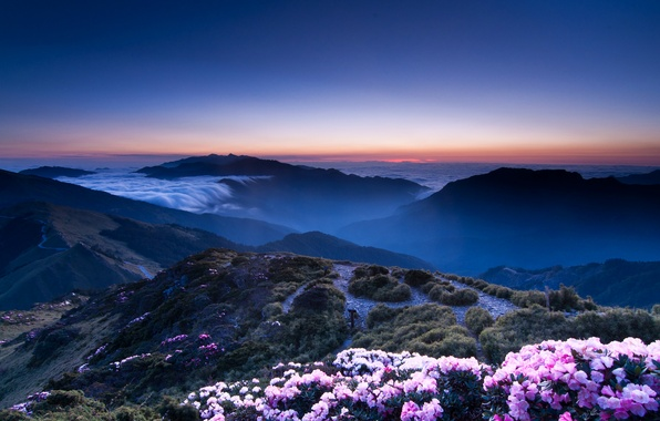 Picture the sky, sunset, flowers, mountains, orange, hills, view, height, The evening, haze, pink, blue