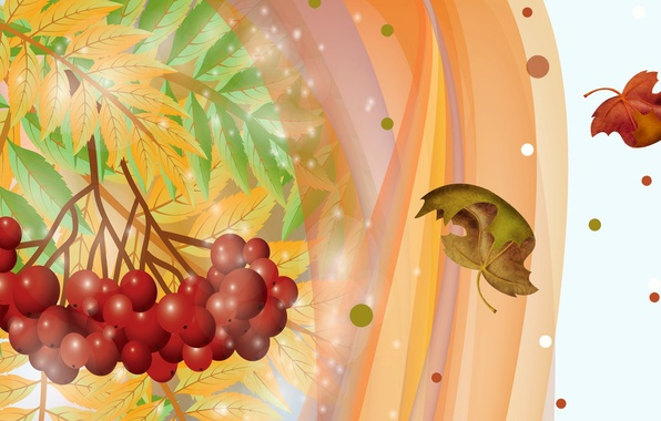 Picture autumn, leaves, berries, collage, vector