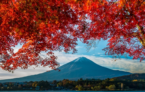 Picture autumn, mountain, Japan, maple, Fuji