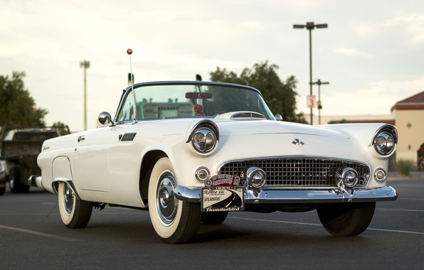 Picture Ford, the front, 1955, Thunderbird, T-Bird