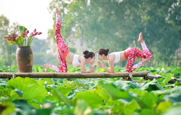 Picture summer, nature, girls, gymnastics, yoga, Asian girls