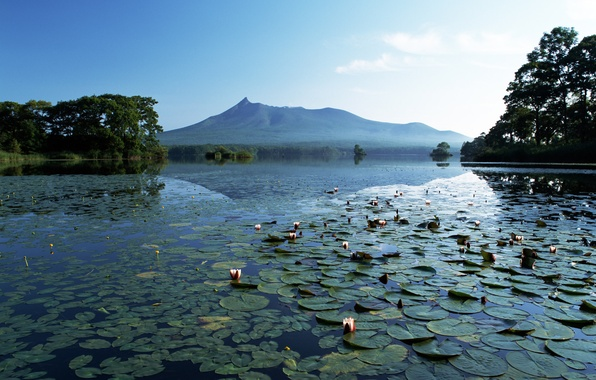 Picture mountains, lake, Lily, silence