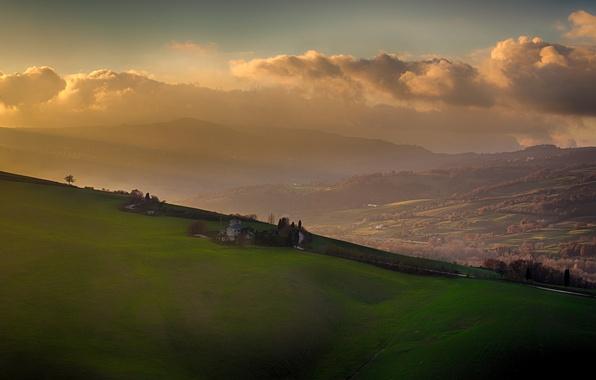 Picture grass, tree, morning, fog, hills, sunrise, mist
