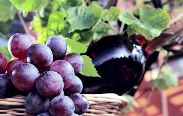 Picture berries, wine, basket, bottle, grapes, bunch