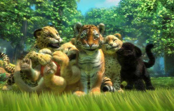 Picture tiger, animals, the game, predators, Leo, Panther, art, leopard, kittens, Cheetah, kids, friends, lion