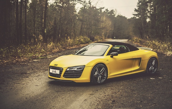 Picture Audi, yellow, Spyder, front, V10