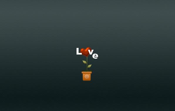 Picture flower, love, flowers, heart, minimalism, love, heart, pot, plant vase