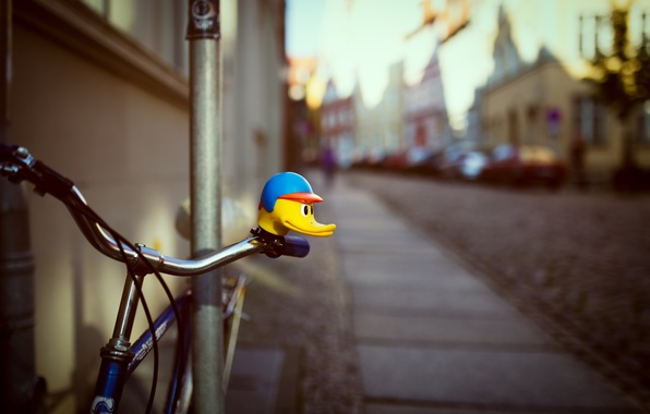 Picture bike, house, duck