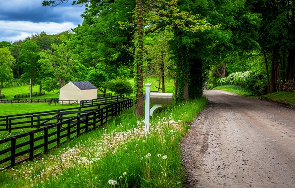 Picture road, forest, the sky, clouds, trees, mountains, nature, house, spring, house, forest, road, sky, trees, …