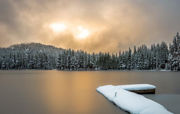 Picture winter, bridge, nature, lake