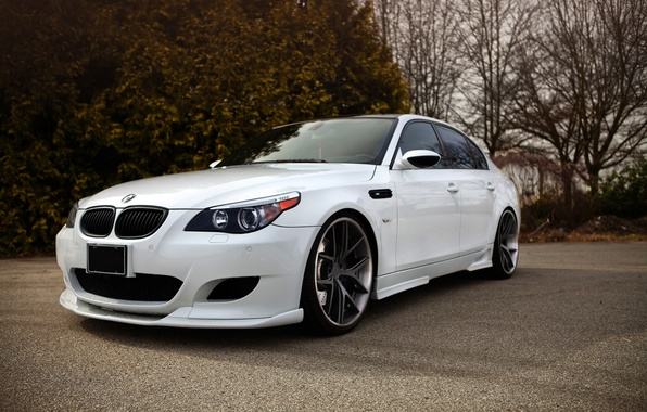 Picture white, trees, tuning, bmw, BMW, white, sedan, e60