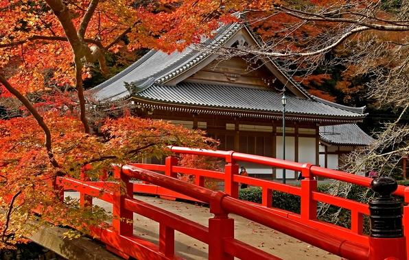 Picture road, autumn, leaves, trees, bridge, Japan, temple, Japan, maple