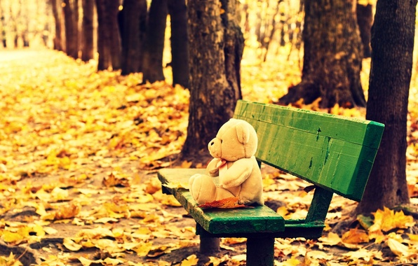 Picture autumn, leaves, trees, bench, background, tree, Wallpaper, mood, toy, yellow, shop, bear, shop, wallpaper, leaves, …