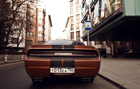 Picture machine, photographer, Dodge, auto, photography, photographer, feed, Alex Bazilev, Alexander Bazylev, Alexander Bazilev